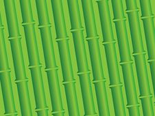 Free Bamboo Background Royalty Free Stock Photos - 24431058