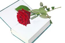 Free Rose With A Book Royalty Free Stock Image - 24432296