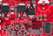 Free Red Electronic Circuit Board, Small Elements Stock Photography - 24430972