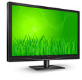 Free Monitor With Green Grass Stock Photo - 24447410