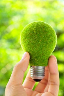 Hand Holding Eco Light Bulb Royalty Free Stock Photo