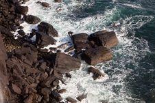 Free Ocean Wave Coastal Royalty Free Stock Image - 24446906