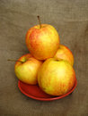 Free Nice Apples On The Plate Royalty Free Stock Images - 24459409