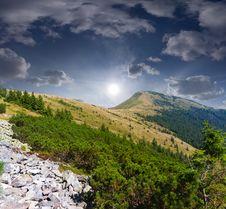 Free Summer Landscape Stock Image - 24451901