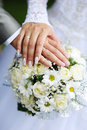 Free Hands And Wedding Rings Royalty Free Stock Photography - 24466557