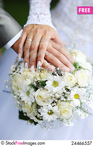 Hands And Wedding Rings Free Stock Images Photos 24466557