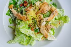 Free Roast Chicken Salad In White Plate Royalty Free Stock Photos - 24469918