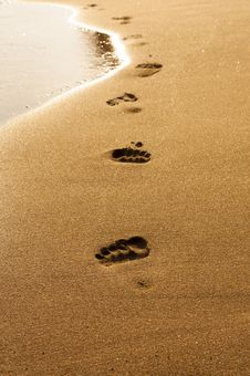 Free Footprints In Wet Sand Of Beach Stock Image - 24482001