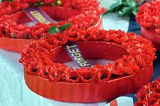 Free Wreath Of Poppies Royalty Free Stock Photo - 24486985