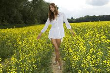 Free Brunette Woman In A Yellow Flowers Field Stock Photo - 24487010