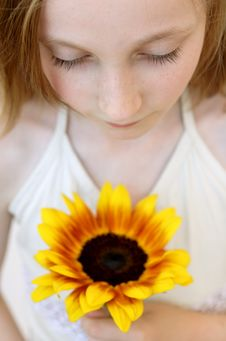 Free Girl With Sunflower Stock Image - 2455211