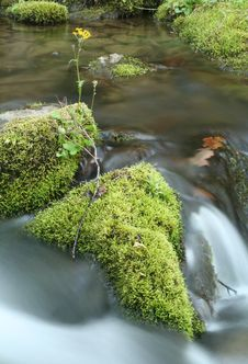 Free Moss Covered Falls Stock Photo - 2455300