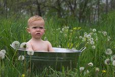 Free Nature Baby Royalty Free Stock Photos - 2456398