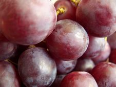 Free Grape Royalty Free Stock Images - 2458279