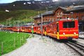 Free Narrow Gauge Railway. Stock Photos - 24504203
