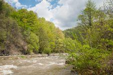 Free Raging River Through Green Lush Vegetation Stock Photo - 24501370