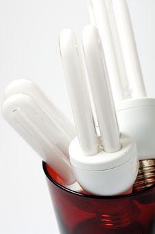 Free Lightbulbs Stock Image - 24511061