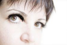 Free Eye Of Woman Royalty Free Stock Image - 24516786