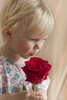 Free The Little Girl The Blonde Smells A Red Rose Stock Photography - 24517352