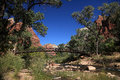 Free Bridge In Zion NP Stock Images - 24523484