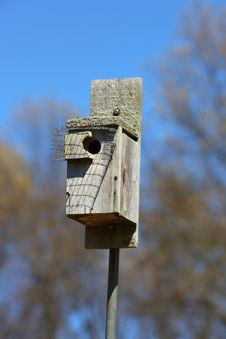 Free Bird Feeder Stock Photography - 24524762