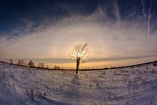 Free Eye Of Winter Royalty Free Stock Photography - 24526217