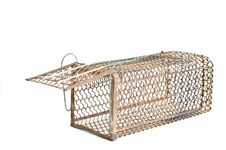 Free Rat Cage. Stock Images - 24526544