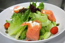 Salad Smoked Salmon Stock Images