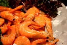 Free Shrimp Boil Royalty Free Stock Photo - 24527925