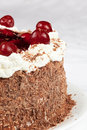 Free Black Forest Cake Royalty Free Stock Photo - 24533285