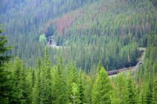 Free Train In The Canadian Rockies. Royalty Free Stock Photography - 24530767