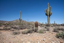 Free Arizona Desert Scenery Stock Image - 24533171
