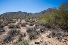 Free Arizona Desert Scenery Stock Photos - 24533203
