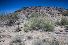 Free Arizona Desert Scenery Royalty Free Stock Images - 24533229