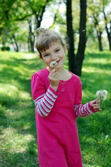 Free Little Girl With Dandelions Stock Photography - 24541002