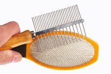 Free Hairbrushes For Animals In A Hand Stock Images - 24547394