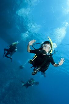Free Scuba Divers Royalty Free Stock Photo - 24556375