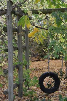 Free Old Tyre Swing Royalty Free Stock Photos - 24573618