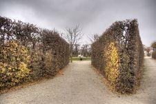 Autumn In Vienna Park Royalty Free Stock Photos