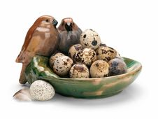 Free Quail Eggs. Stock Photo - 24577340