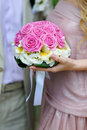 Free Bouquet Of Pink Roses Stock Images - 24582274
