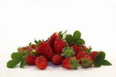 Free Strawberries Royalty Free Stock Photography - 24581307