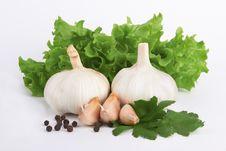 Free Fresh Garlic Royalty Free Stock Photography - 24588537