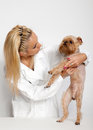 Free Veterinary Doctor And A Dog Royalty Free Stock Photo - 24593255
