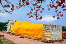 Free Reclining Buddha And Blue Sky Royalty Free Stock Photo - 24593345