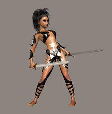 Free She Warrior Stock Photography - 2462212