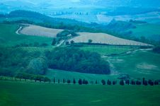 Free Italian Fields Royalty Free Stock Images - 2462299
