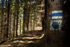 Free Walking-tour Stock Photos - 2465773
