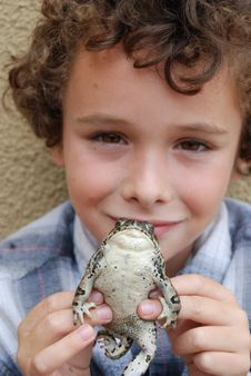 Boy Holding CA Native Toad Royalty Free Stock Photography