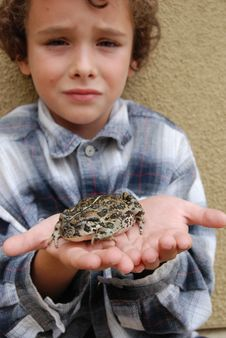 Boy Holding CA Native Toad Stock Photography